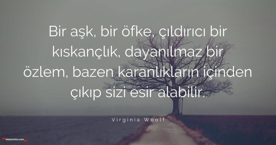 Virginia Woolf sözleri 4